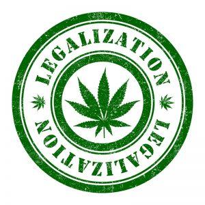 Der Feind krimineller Abzocker: Legalisation