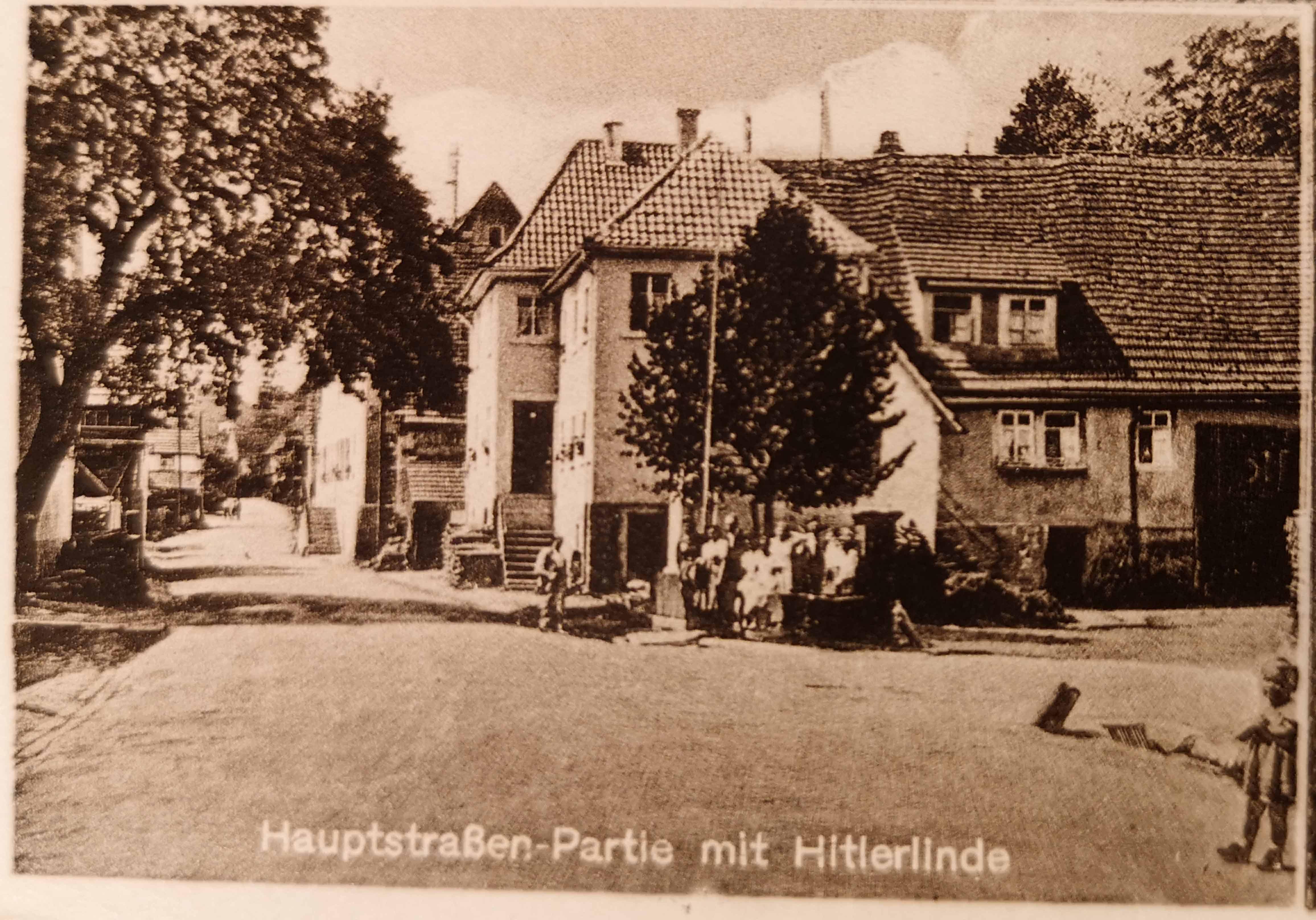Hauptstraßen-Partie mit Hitlerlinde, einer Pflanze, die besonders gepflegt wird